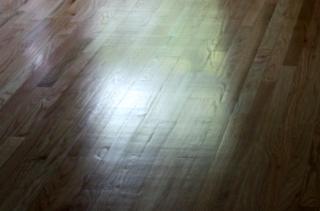 hardwood-floor-chatter