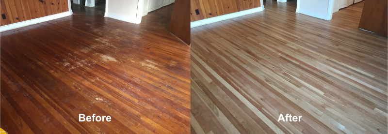 Royal Wood Floors Goes Over Problems, Causes and Cures for Home Owners That Want Beautiful Hard Wood Floors