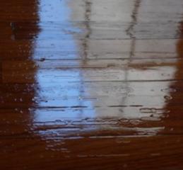 hard-wood-floor-crawling