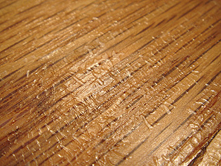hard-wood-floor-wrinkling